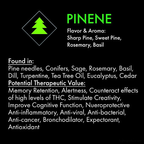 Pinene_web.jpg