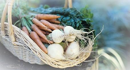 Vegetable%20Basket_edited.jpg