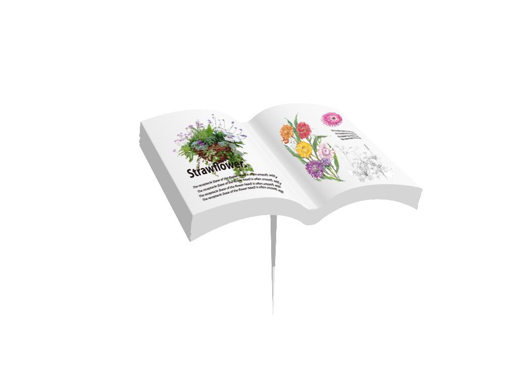植物図鑑3