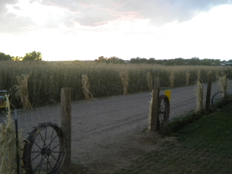 Copy of sunset at the maze 042.jpg