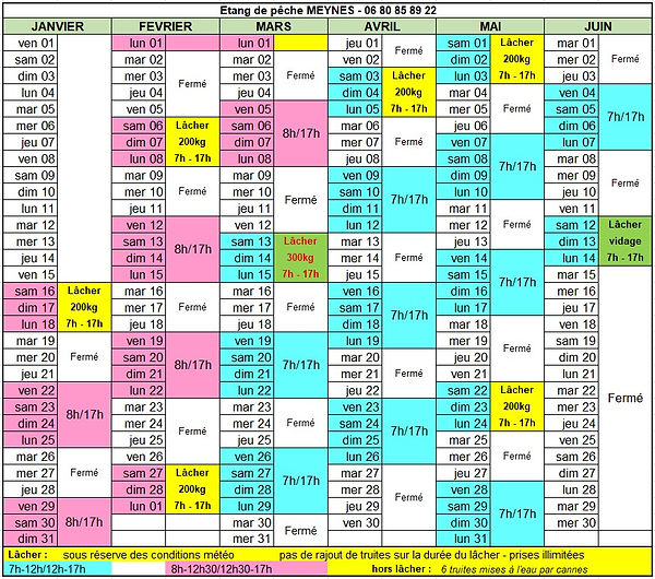 planning Meynes 1er semestre 2021.jpg