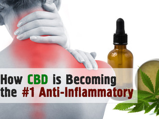 How CBD is Becoming the #1 Anti-Inflammatory