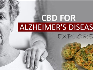 Cannabis and dementia
