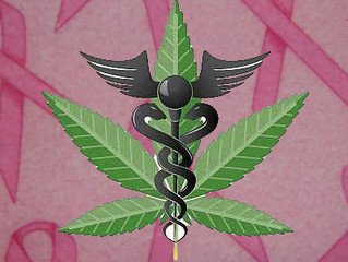 BREAST CANCER AND MEDICAL CANNABIS