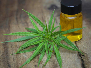 Cannabis extract could provide 'new class of treatment' for psychosis
