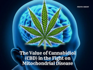 The Value of Cannabidiol (CBD) in the Fight on Mitochondrial Disease