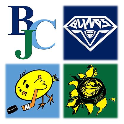 BCJ (BLG CNS JDP) Jersey Logo