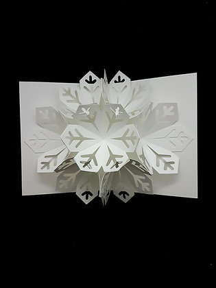 3D Pop-Up SnowFlake Card