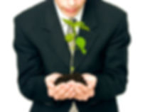 Management Consulting (Holding Plant).jpg