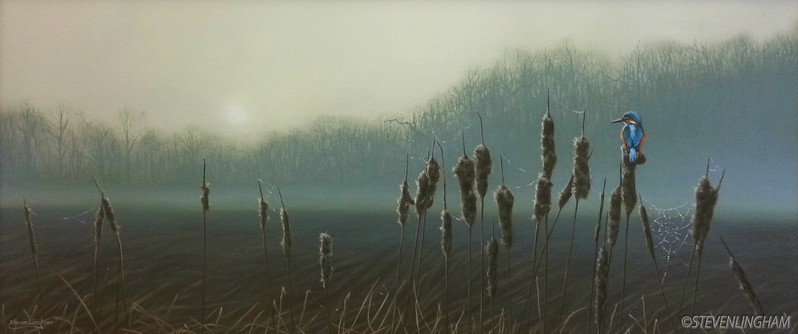 Mist On The Reedbeds