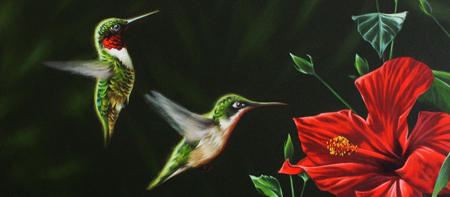 Ladies%2520First-%2520Ruby-throated%2520