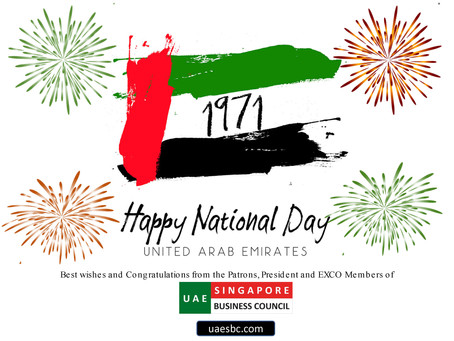 First Ever Supplement in Business Times featuring UAE on their 49th National Day, 2 Dec