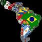 mapa latinoamericano.png