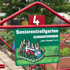 Projekt: Erster Seniorentreffengarten