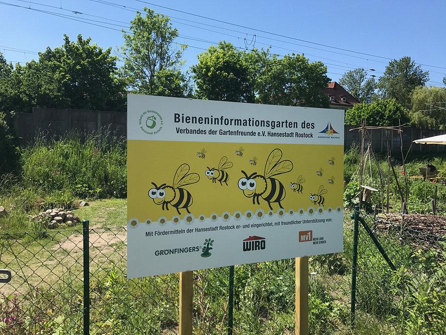 Bienen1.jpg