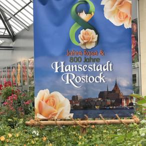 Rosenfest 2019 bei Grönfingers