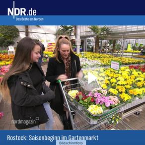 """KGA """"Rostock Ost"""" e.V. beim NDR Nordmagazin"""