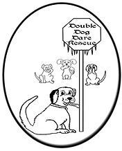 Double Dog Dare Logo_edited.png