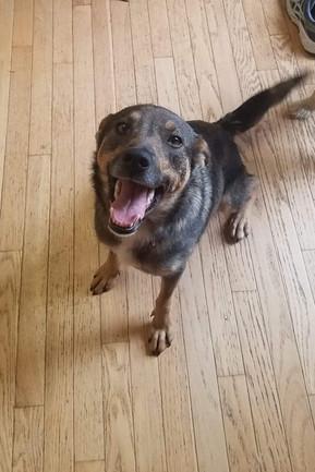 Hellen Adopted 6-14