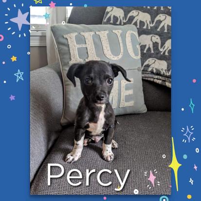 Percy 7-20