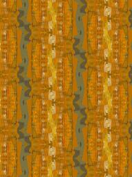Pumpkin and Cobwebs.  15.9.19