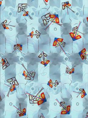 International Kite Day.  14.1.19