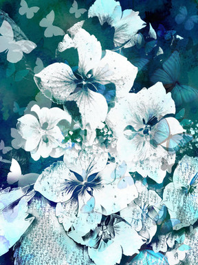 Nature's Harmony.  28.8.19