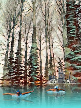 Woodland Winter Dip.  2.2.19