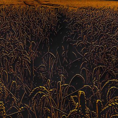 Wheat.  6.8.19