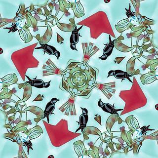 Woodpeckers and Mistletoe.  12.1.19