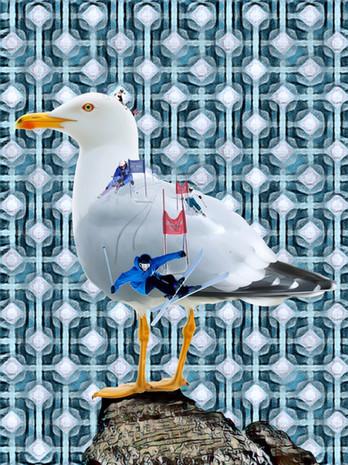 A Flock of Seagulls.  7.2.19