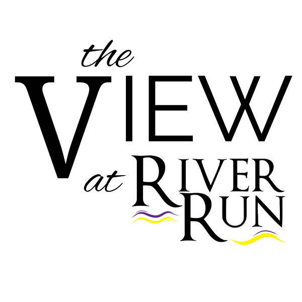 The View Logo (1).jpg