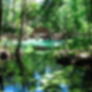 Gissy Springs