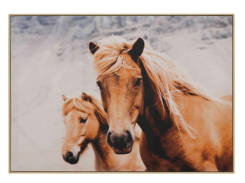 Horse & Foal Canvas