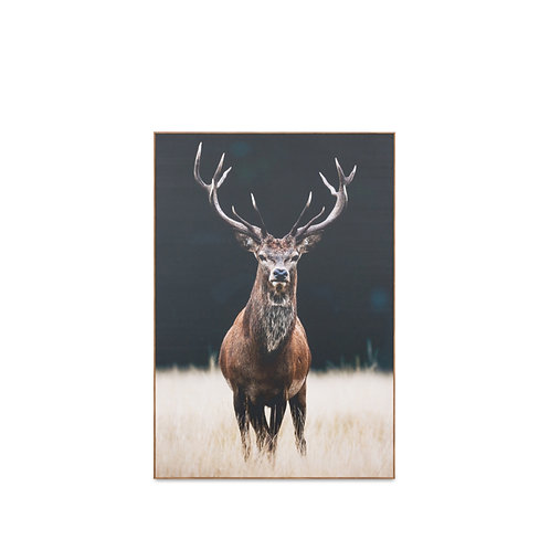 Photographic Framed Meadow Deer Canvas Print