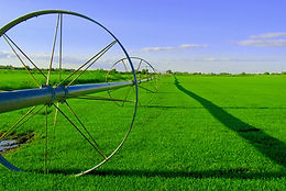 Agricultural markets have seen an increase volatility brought about by several factors including poor harvests, sustained demand, global health concerns, increased use of agricultural products for fuel, increased activity on commodity markets and soaring oil prices causing fuel and fertilizer costs to rise.