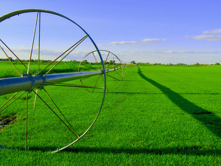 When agriculture meets technology