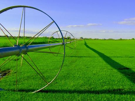 The State of Arizona Farmland