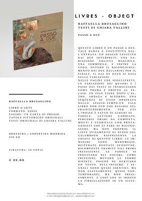 Catalogo libro d'artista brusaglino.jpg