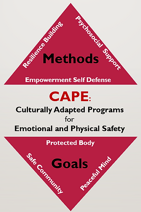 The methods and goals of CAPE