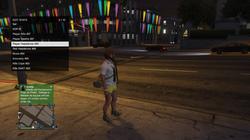 Grand Theft Auto V_30