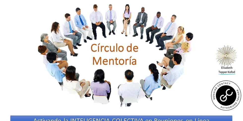 Circulo de Mentoría ¿Qué hemos aprendido sobre la facilitación en línea?