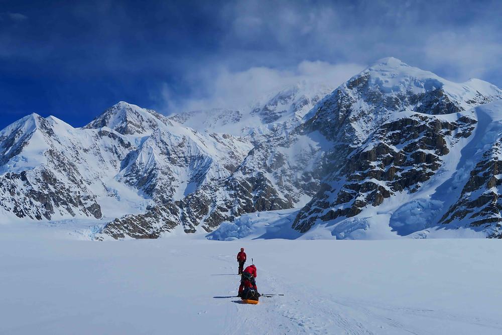 sur le glacier en pulkas, avec le Denali en toile de fond