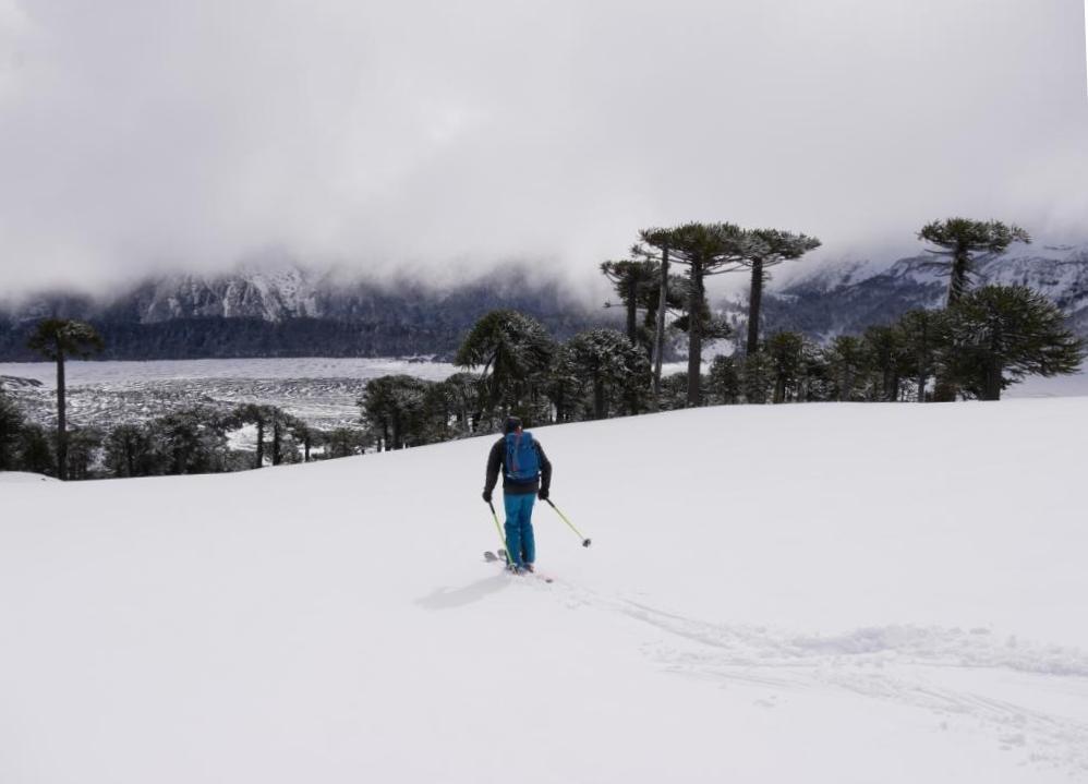 Descente à ski, vue sur les coulées de lave et les araucarias