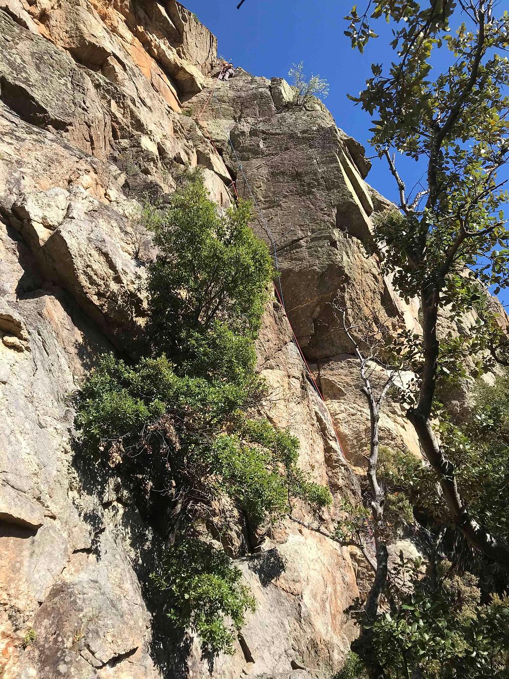 Location de coinceurs et friends de grimpe