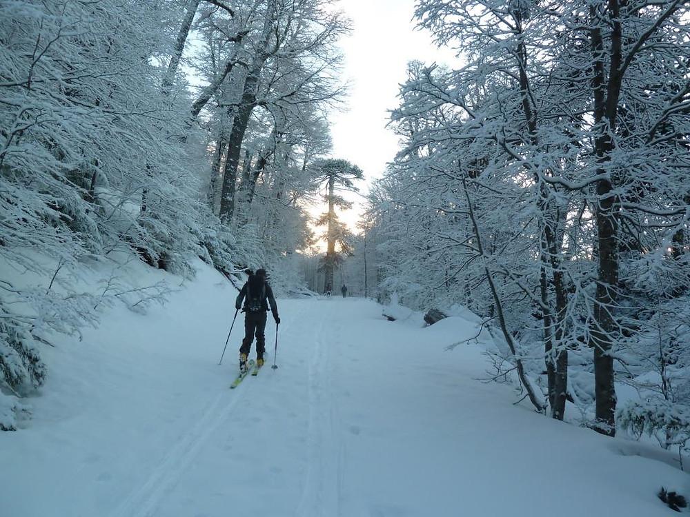 En direction du Lonquimay à ski