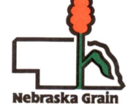 SORGHUM BOARD SEEKS APPLICANTS FOR OPEN SEAT in District 3