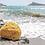 Thumbnail: Eponge naturelle de mer