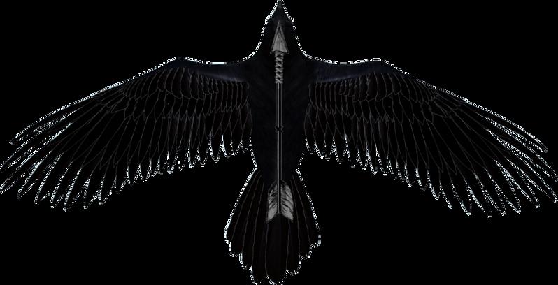Logo Rheaven.png