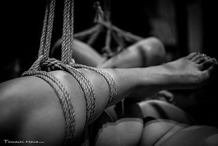 Shibari Jam Open House